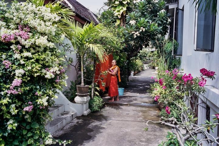 bangkokcolor-11